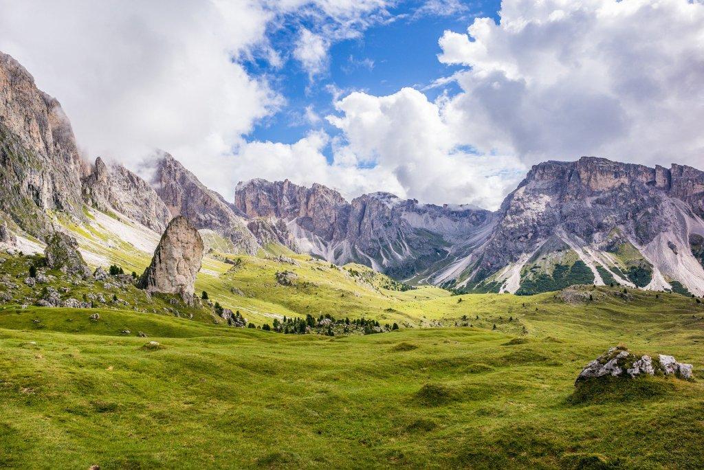 Mountain Meadow Summit landscape image